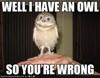 Raven: owl