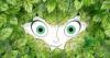 soy_joy userpic