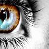 stock: eye