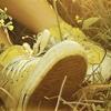 sarken userpic