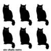 6 cats
