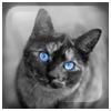 beautyflover userpic