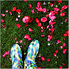 _herzsprung userpic