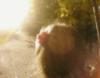 andy_n1 userpic