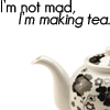 teaandbickies userpic
