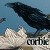 corbie