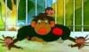 Ольга: обезьянка
