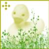clone1 userpic