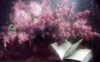 book and lilac