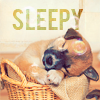 Andrea: doggy_sleepy