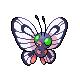 Shiny Butterfree!