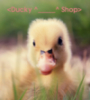 duckyshop userpic