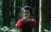 nymph_arrows userpic
