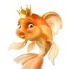 Я, золотая рыбка, успех