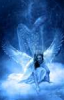 where_angels_go userpic