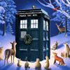 the silver lady: Winter Tardis by werefox61