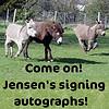 samlin48: Jensen's donkeys