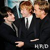 Loyaulte Me Lie: Hary/Ron/Draco
