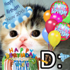 Birthday Fwee Cat