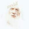 Candice (Rose): Gandalf