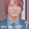 cnidaria_jin: Kame; Why so cute? :D