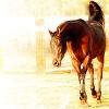 jezebelmare userpic
