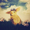 кроликвкороне