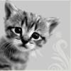 lina_novakova userpic