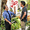 Danny/Steve Hearts& Argument Hawaii Five
