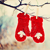 [stock] warm Canada ♥
