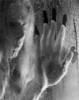dark_aliedwar userpic