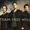 Working for the Mandroid: Team Free WIll