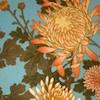 хризантемы, цветы, японистическое
