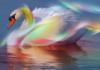 profile, swan, pretty, wallpaper