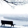 Winter: Bench (Lonely)