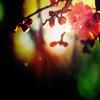Sprig of Flowers