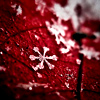 Red snow on red