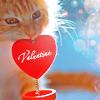 любовь рыжая
