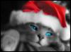 angelcass userpic