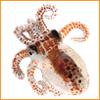 tentacle cute baby baby swish