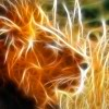 light lion