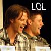 Wynefred: Jensen & Jared - LOL