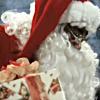 Santa Foreman