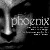 rachel: phoenix