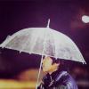 shhboombang: Nino