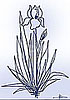 iris_flower0802 userpic