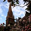 Künstliches Mädchen | ☘Lara Kelley Gallagher☘: Melbourne~Saint Patrick's Cathedral