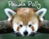 panda_polly userpic