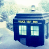 tardis snowed in