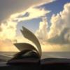 мир с книгой